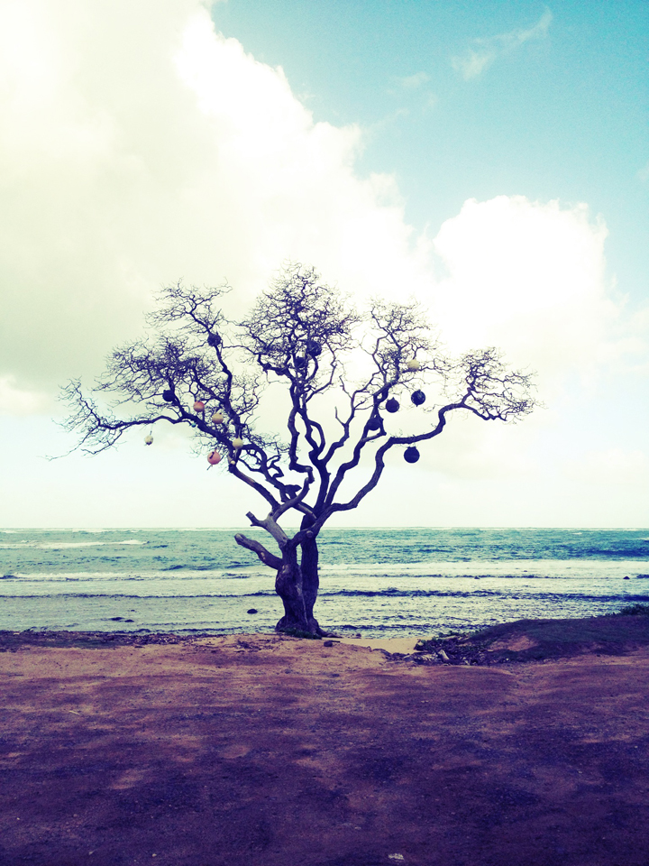 beach-ball-tree