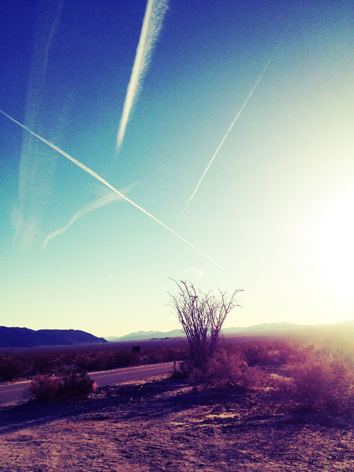 flight-paths-