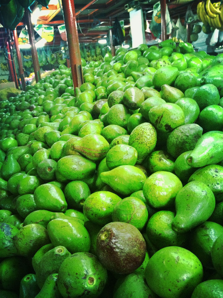 Jakarta, avocado mountain