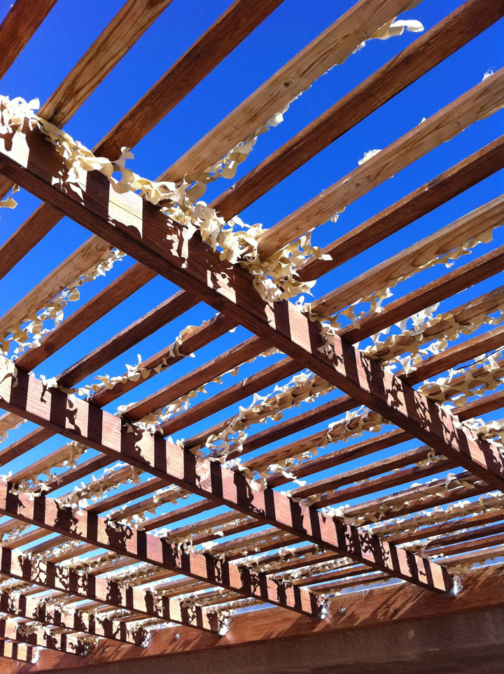 rafters-over-porch