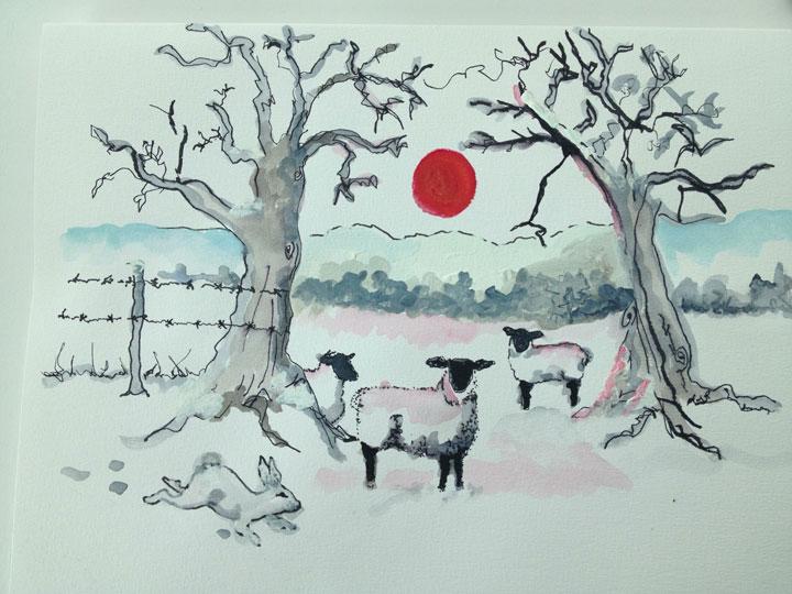 Suffolk-sheep,-Suffolk-winter.-Lottie-Nevin