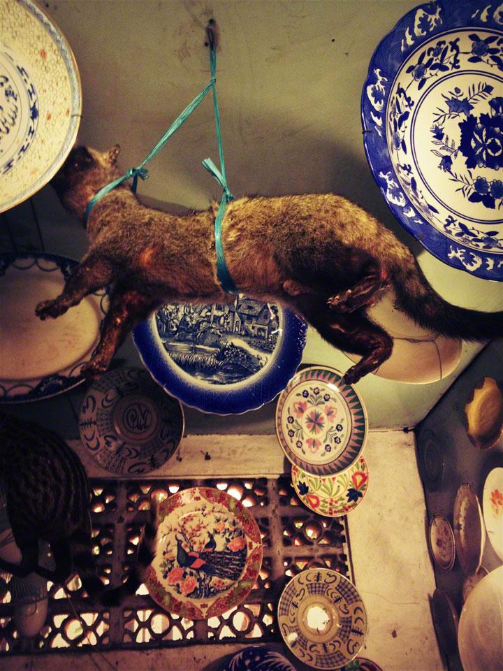 jakarta-antiques-jalan-surabaya-civet-cat