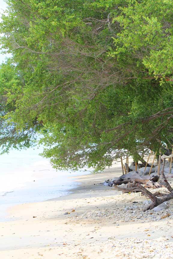 gili-lombok-paradise