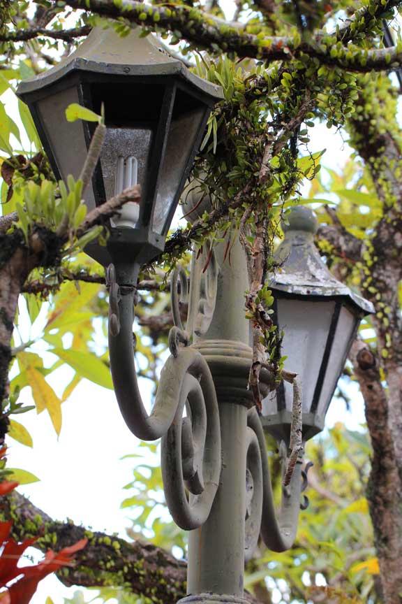 ubud-bali-streetlamps-lottie-nevin