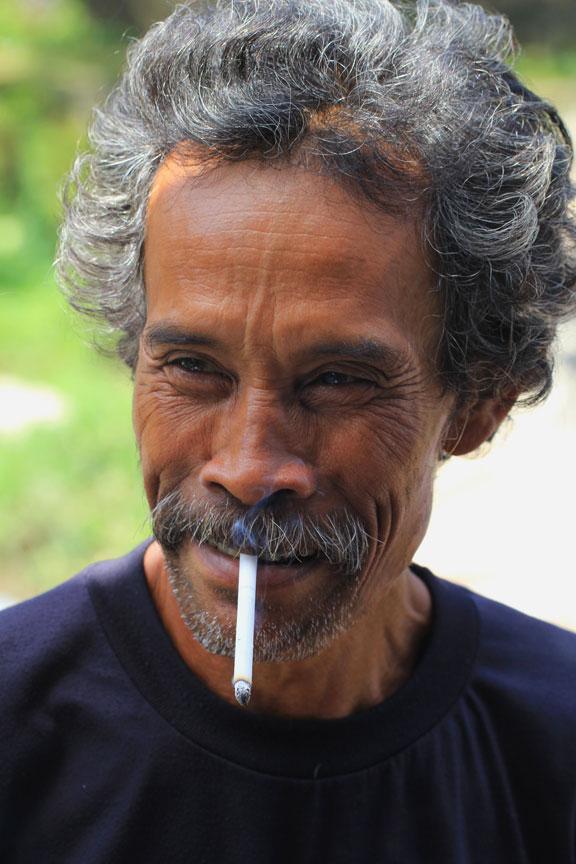 bali-kampung-rural-life-cocks