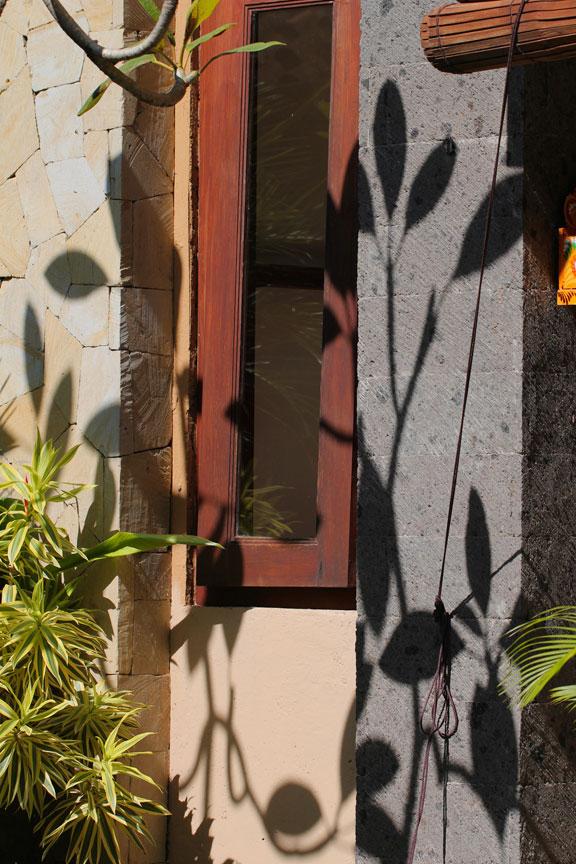 frangipani-bali-shadows