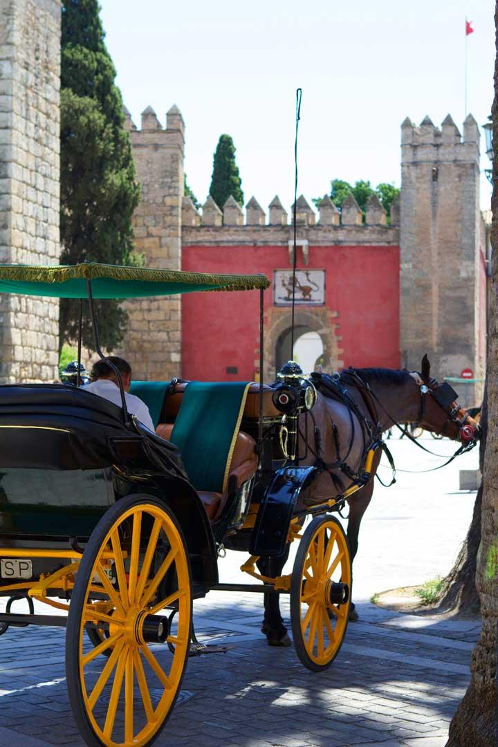 seville-horse-cart