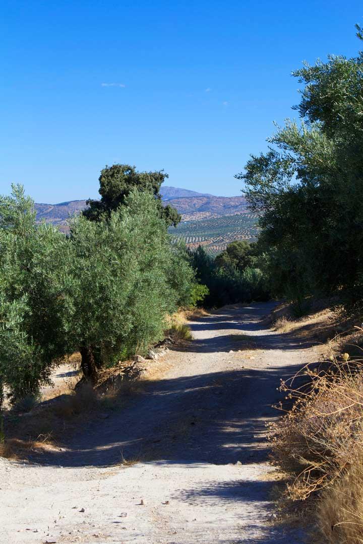 Las-Pilas-de-Fuente-Soto-andalucia