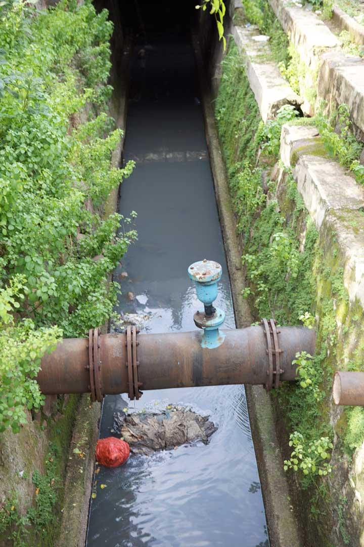 my-favourite-sewer