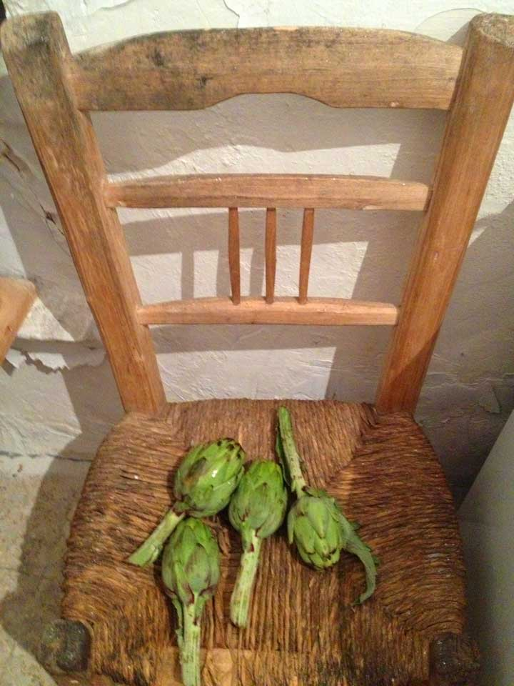 artichokes-on-chair-kitchen