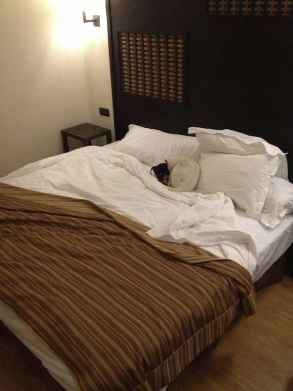 four-star-luxury-in-hotel