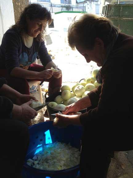 peeling-onions---antonia