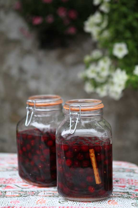 cherry-brandy