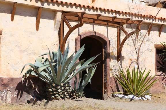 cactus-and-doorway---fort-bravo---lottie-nevin