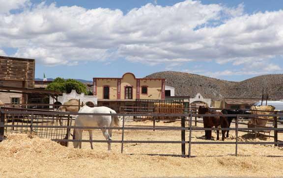 horses---fort-bravo---lottie-nevin