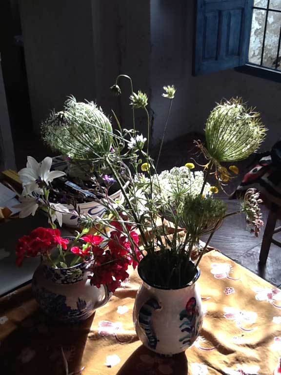 Jug of flowers on table in early morning sun.