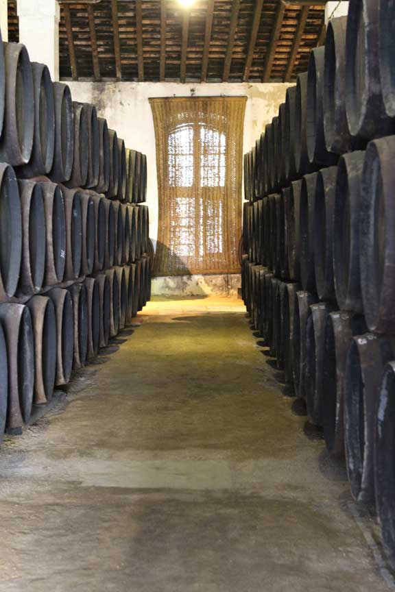 bodega-jerez-barrels